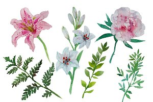 Watercolor painted flowers pack
