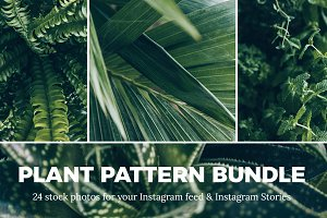 Plant Pattern Instagram Stock Bundle