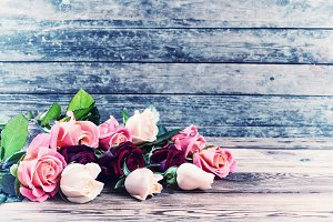 Vintage beautiful roses