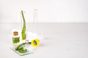 Aloe vera oil in glass bottle with sliced of aloe vera gel