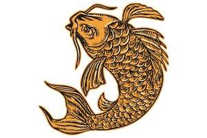 Koi Nishikigoi Carp Fish Jumping Etc
