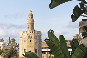 Seville ,Golden Tower & Guadalquivir