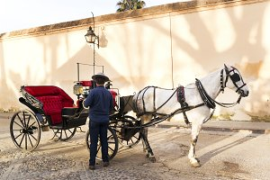 Cordoba , vintage carriage , Spain