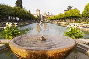 Cordoba , Alcazar fountain