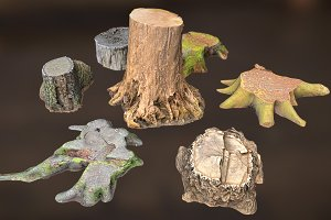 7 TREE STUMPS