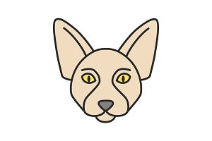 Canadian Sphynx color icon