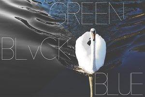 Waves x Goose