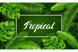 Banner with tropical palm leaves. Exotic tropical plants. Illustration of jungle nature