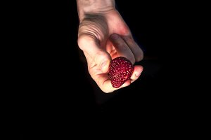 juicy icy fresh strawberry in hand isolated on black dark background