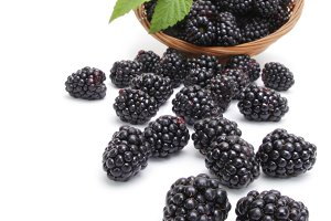 Fresh blackberry with leaf