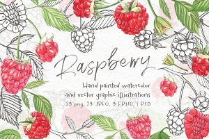 Raspberry Graphic&Watercolor clipart