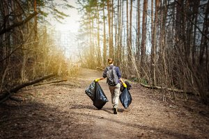 Garbage collection in the forest