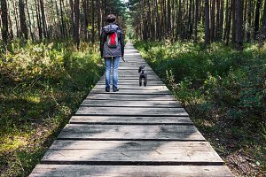 Woman walking dog on wooden pathway