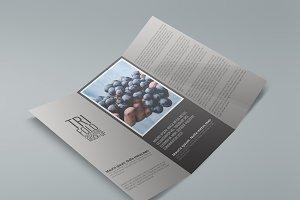 Tri-Fold Brochure Mock Ups