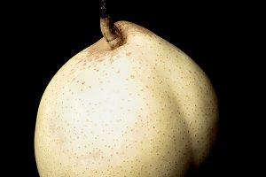 White Pear Nashi