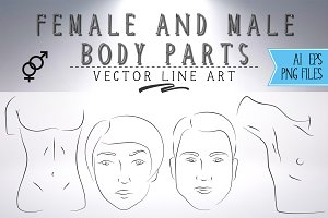 Body parts vector line art set