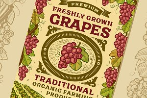 Retro Grapes Poster