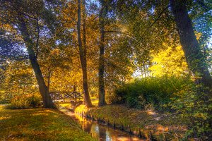 Autumn park, colorful scenery