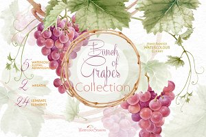 Bunch of Grapes Collection