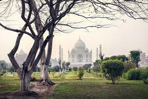 Mehtab Garden Taj Mahal