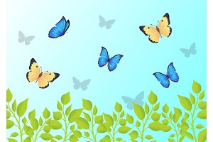 Butterflies that Fly Over Green Grass in Blue Sky