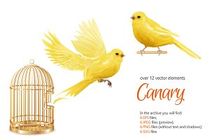 Canary Birds Set