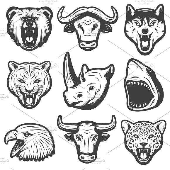 Vintage Wild Animals Set