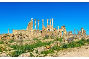 The Capitoline Temple and the Roman Basilica in Volubilis, Morocco