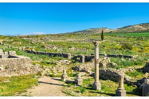 Ruins of Volubilis, a Berber and Roman city in Morocco
