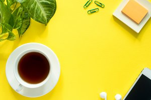 Green leaves plant coffee Cup on yellow desktop, flat lay, copy space.