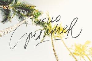 Beautiful Palms on Blue Sky