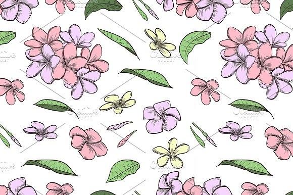 Pattern Of Plumeria Flowers
