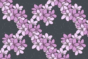 pattern of plumeria flowers