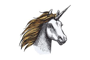 Unicorn horse with horn and golden mane sketch