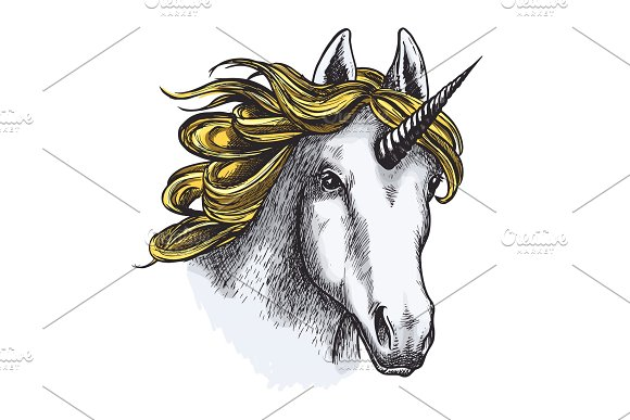 Unicorn Isolated Sketch With Head Of Magic Animal