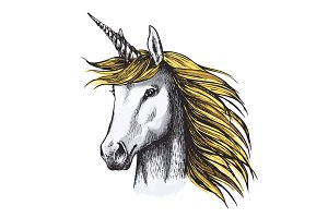 Unicorn horse sketch of fairy or heraldic animal
