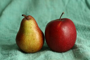 red apple and yellow pear as an art still life for painting