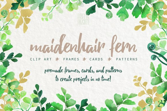 Maidenhair Fern Leaf Clip Art Frames ~ Graphics ~ Creative Market