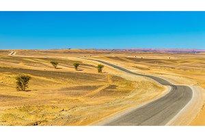 Road Merzouga - Erfoud in Morocco