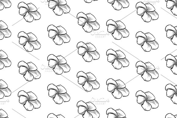 Seamless Pattern Of Plumeria Flowers
