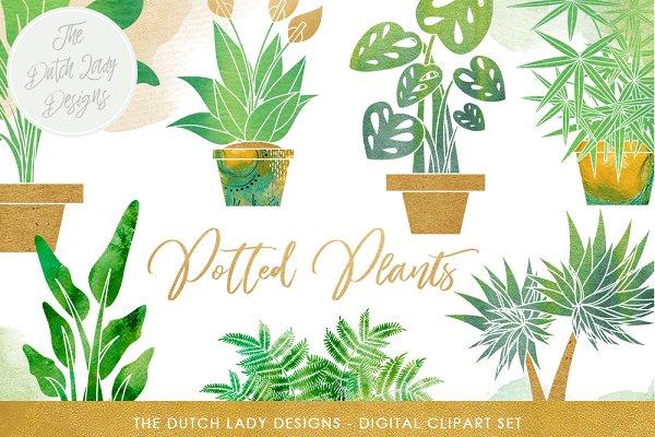 Potted Plants Clipart Set
