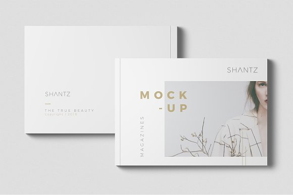 Minimal Mock Up Collections