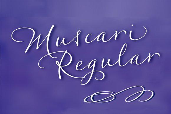 Muscari Regular