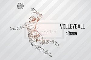 Silhouettes volleyball players. Set