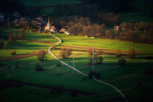 Spring morning in the countryside