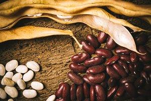 Haricot beans still life