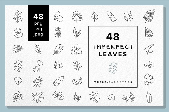 48 X Vector Hand Drawn LEAVES