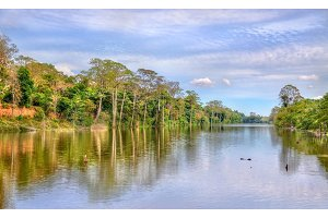 Moat surrounding Angkor Thom in Siem Reap, Cambodia