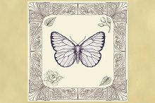 Butterfly and Ornate Frame