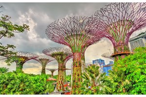Gardens by the Bay, a nature park in Singapore